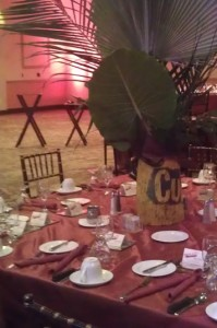 Chesapeake Regional Gala - A Night In Havana!